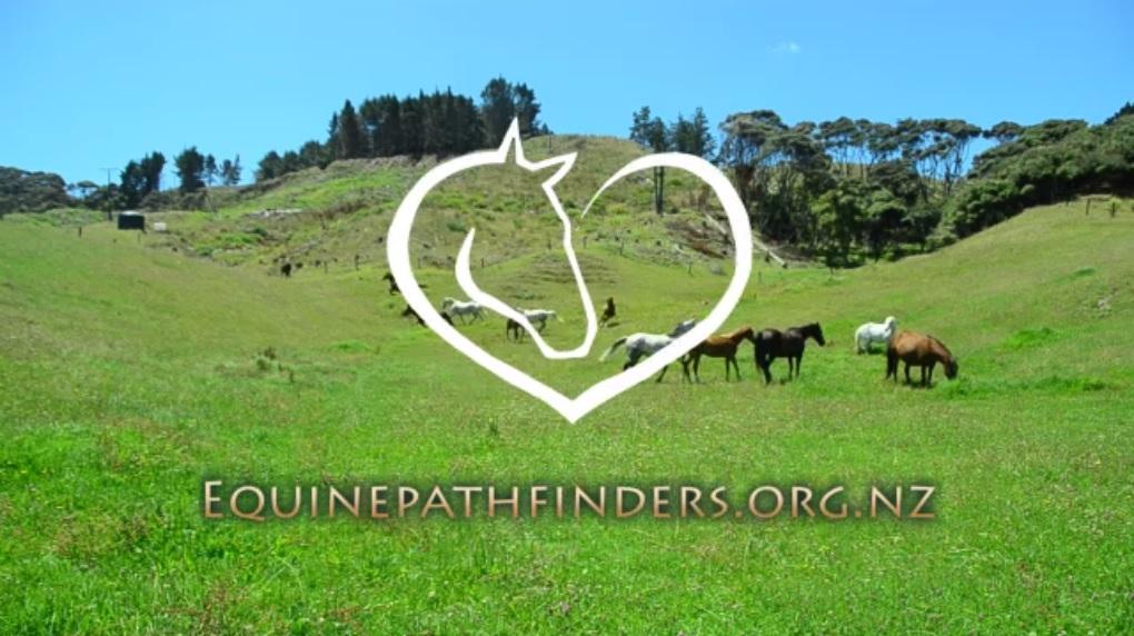 equinepathfinders logo